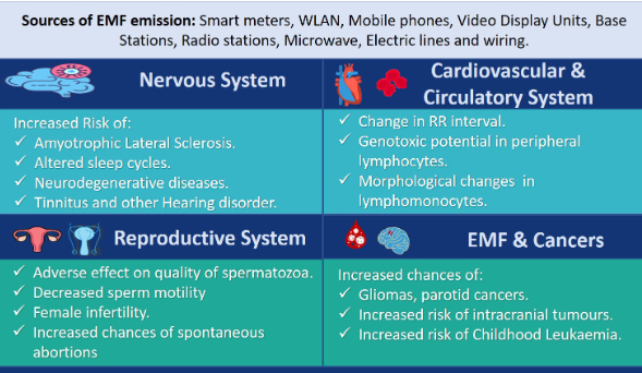 Figure showing possible adverse effects of EMF on different organ system